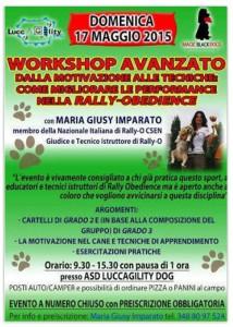 17may2015_workshop